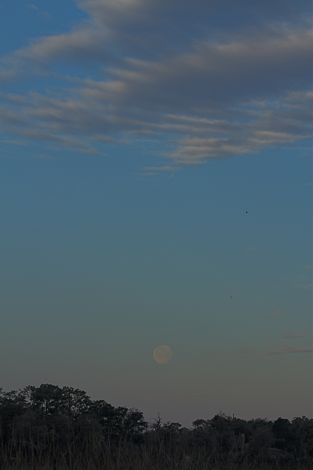 A full moon sets in the morning sky.
