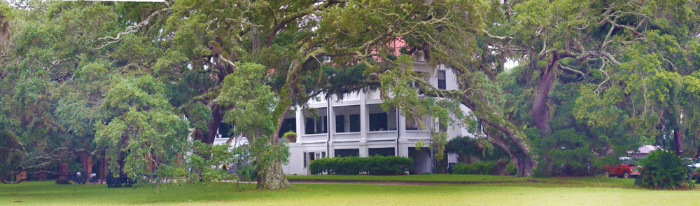 Nestled in the Spanish Moss covered live oaks is the historic Greyfield Inn.