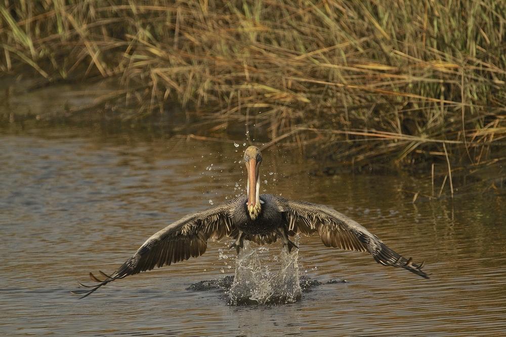 Takeoff..
