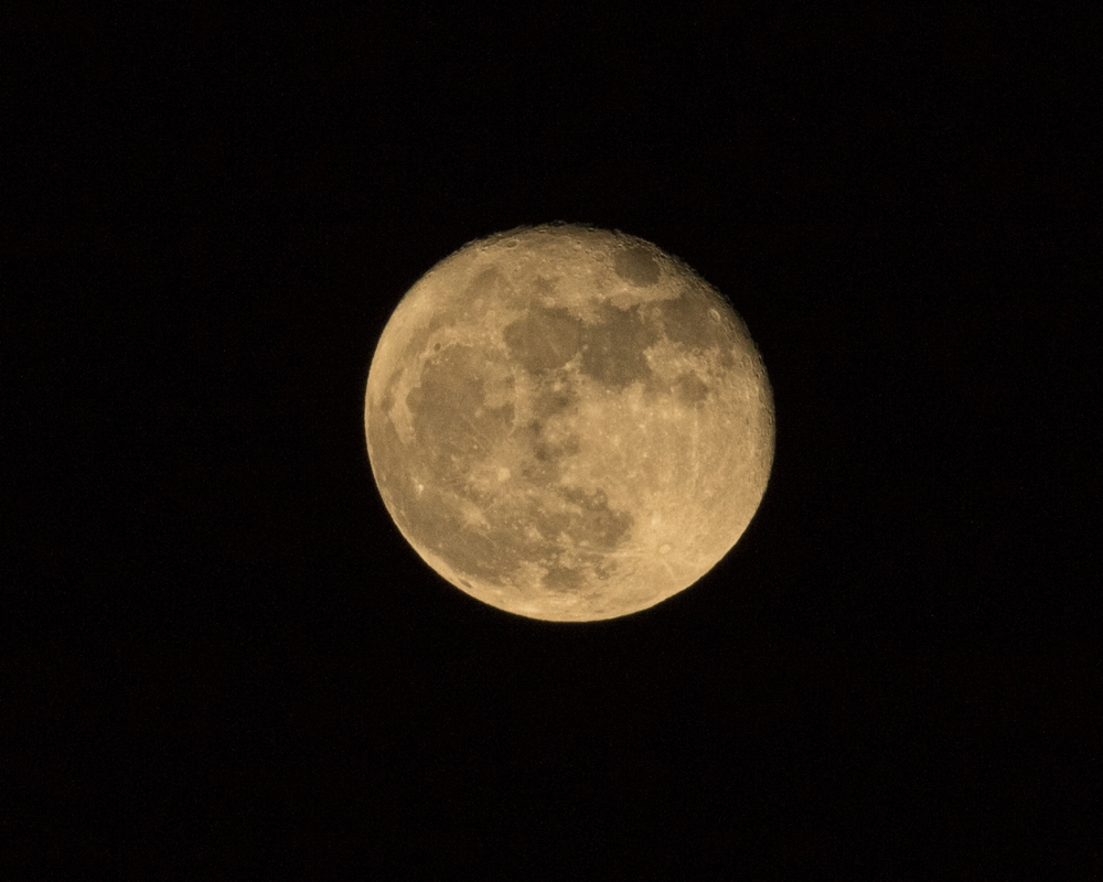 Hope you didn't miss the Harvest Moon last month..if so here tis..then came the change from Daylight Savings Time (Yech).