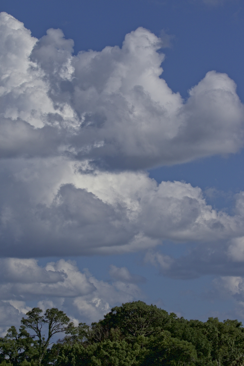 Billowing clouds in the late afternoon over the Broward