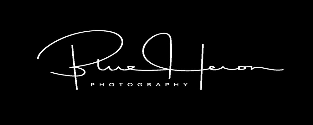 "I have launched my own logo/brand for my photos called ""Blue Heron Photography"" so you will see this on most of my photos on line now"