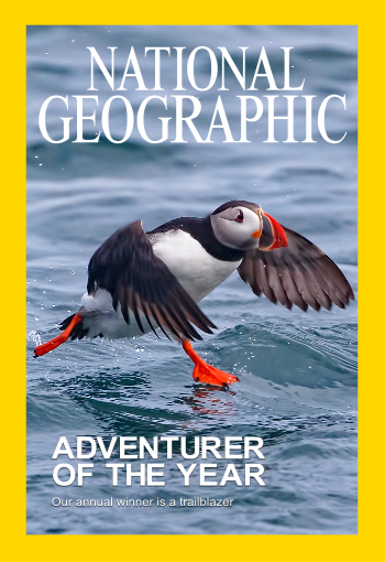 "My National Geographic worthy Cover Photo of a Puffin walking on water...(actually this cover shot photo can by   made with any photo via Nat Geo's ""Create your own cover""  but maybe someday I will make the real thing)."