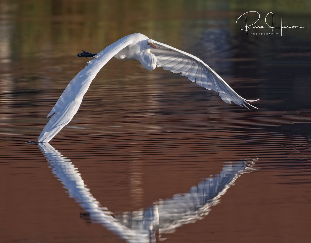 Like the touch of an Angels wing on the water..Have a Great Day!