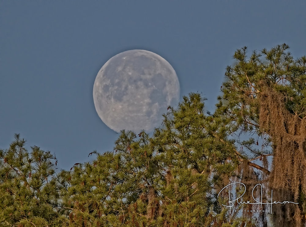 The morning moon set on my parade..