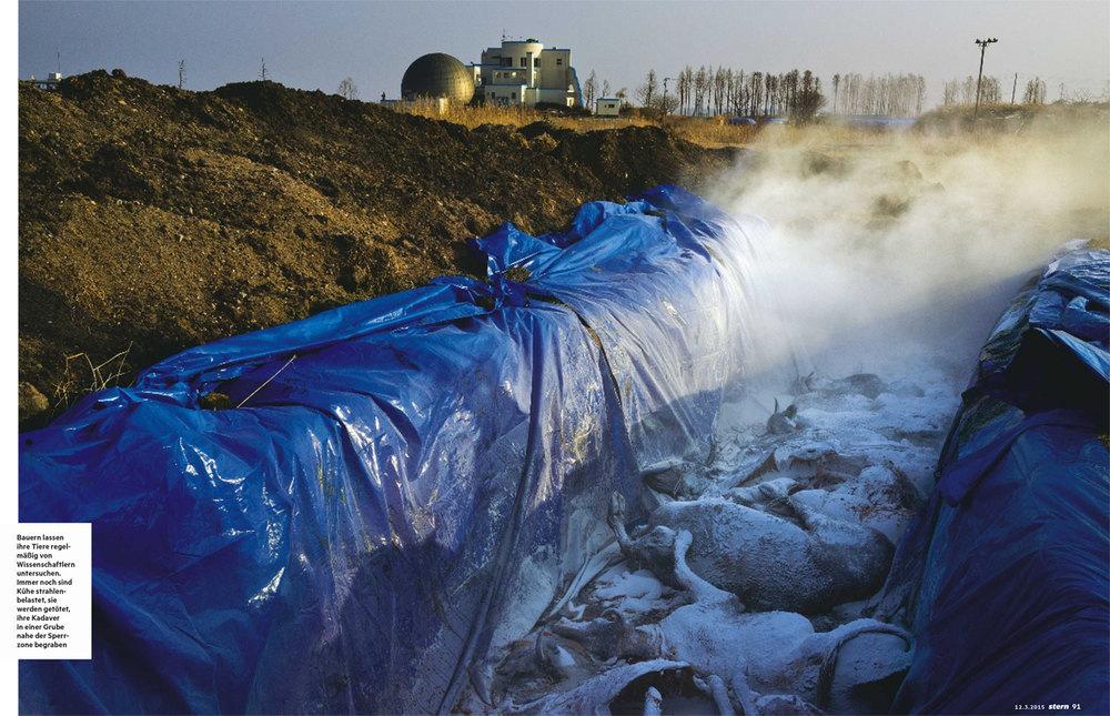 Fukushima_Dominic_Nahr-2.jpg