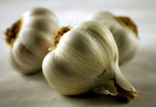 Garlic immune health