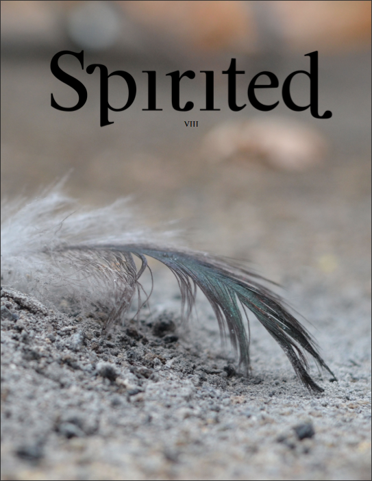 Spirited #8 RISE in print