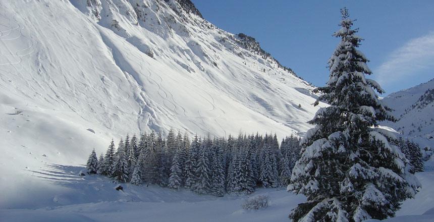 ski-04.jpg