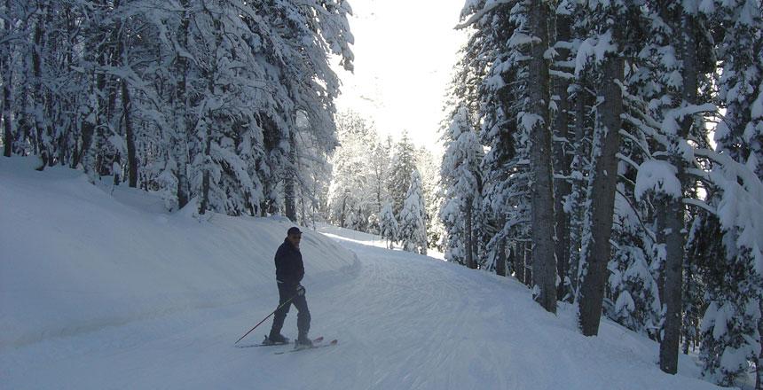ski-05.jpg