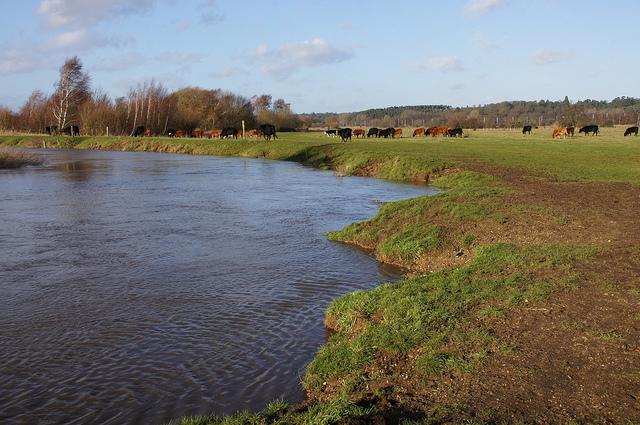 river biggs.jpg