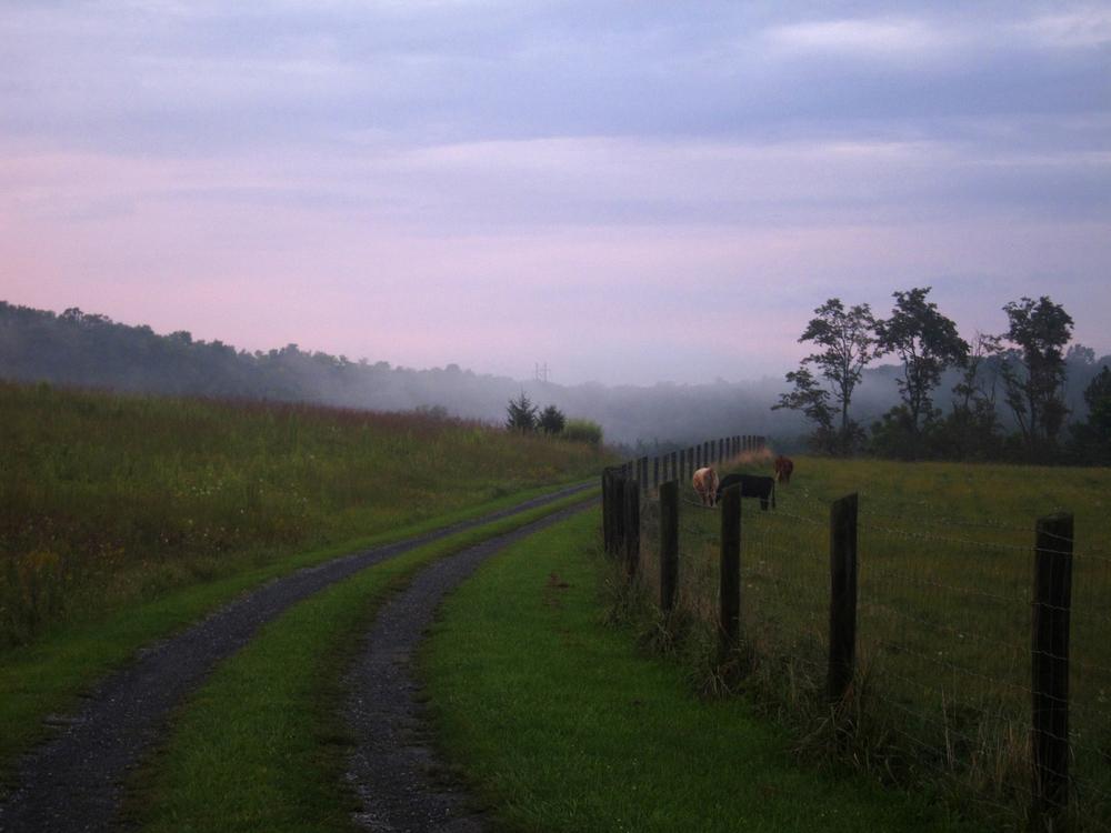 Mount Sidney, Virginia  September 2013