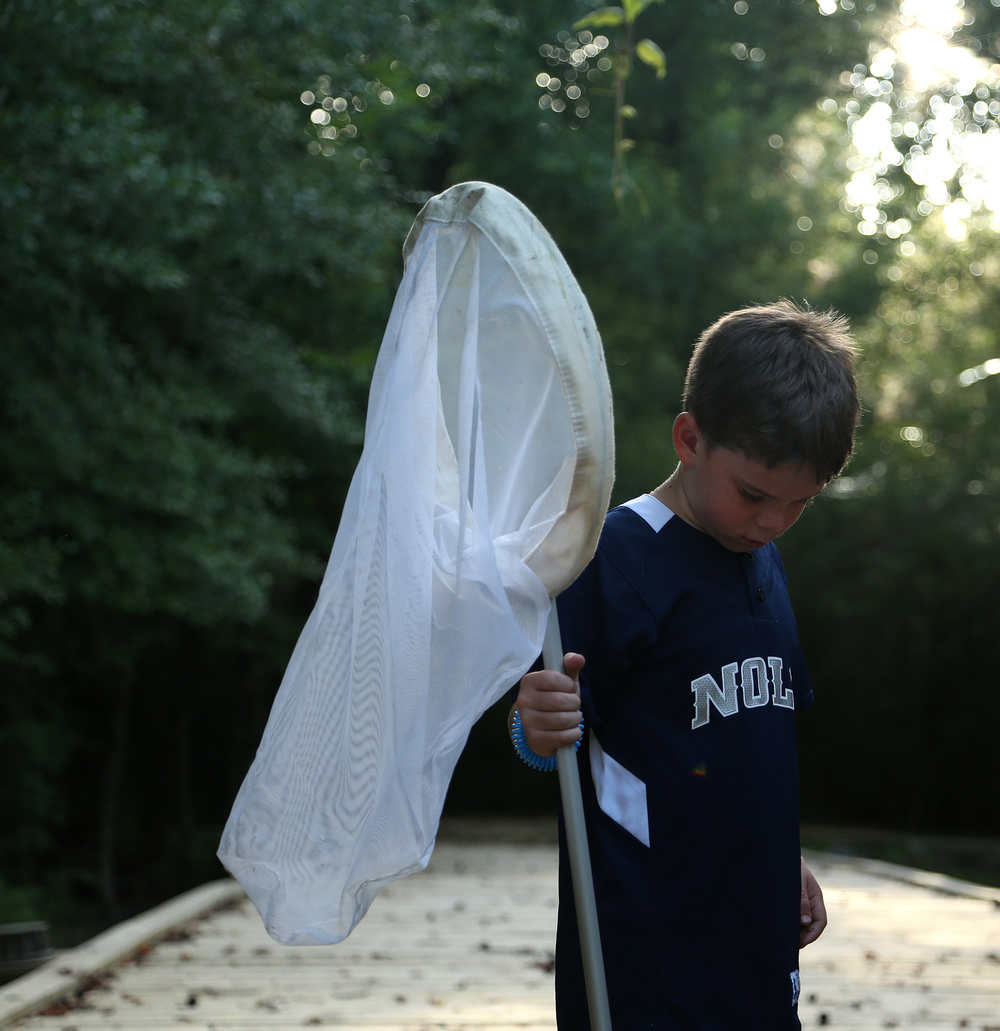 Noah holds a net during Wild Nights - Insect Adventure, a new Wild Encounter that offers the opportunity for close-up observation of insects, spiders, and other wildlife   at the Audubon Wilderness Park located within Freeport-McMoRan Audubon Species Survival Center on the West Bank of New Orleans.