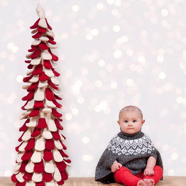 Merry Christmas! #beautifulbaby #merrychristmasbaby @panthercat_xo #ctportraitphotographer #angelachicoskiphotography