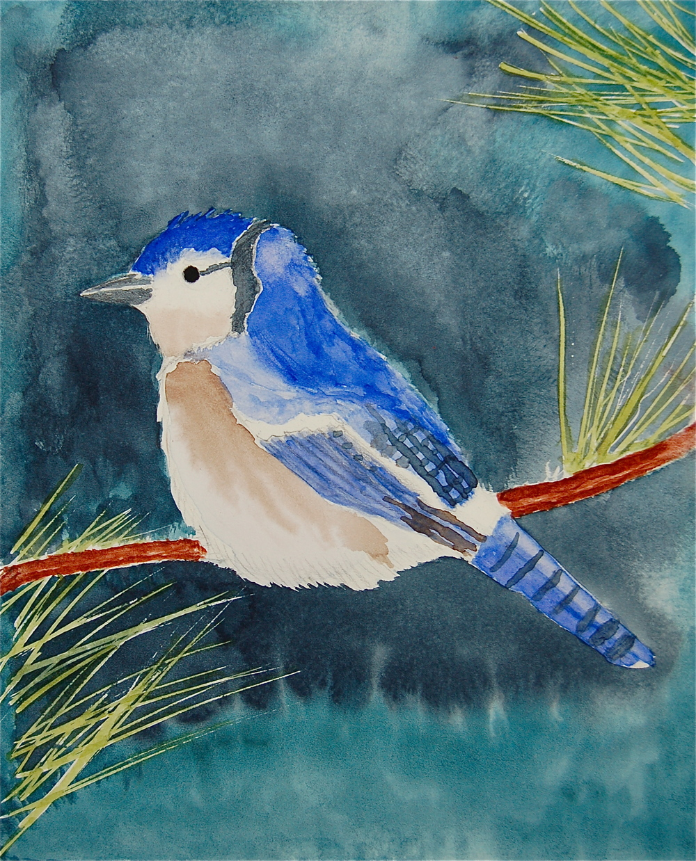 snow bird.JPG