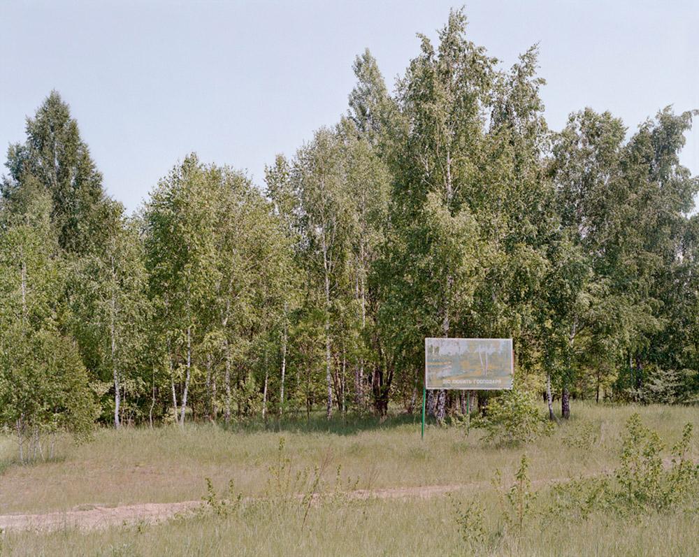 26_forestsign.jpg