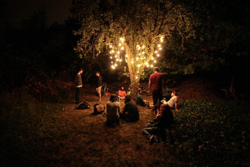 portland_summer_tree.jpg