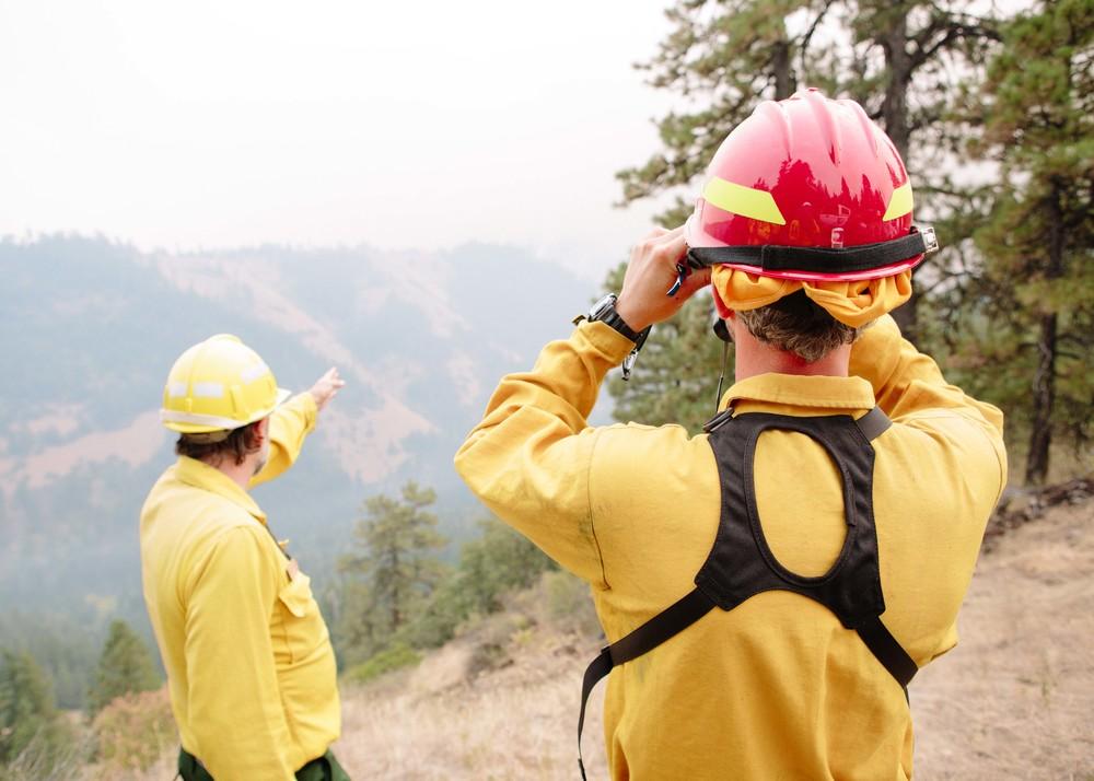 wildfire_253.jpg