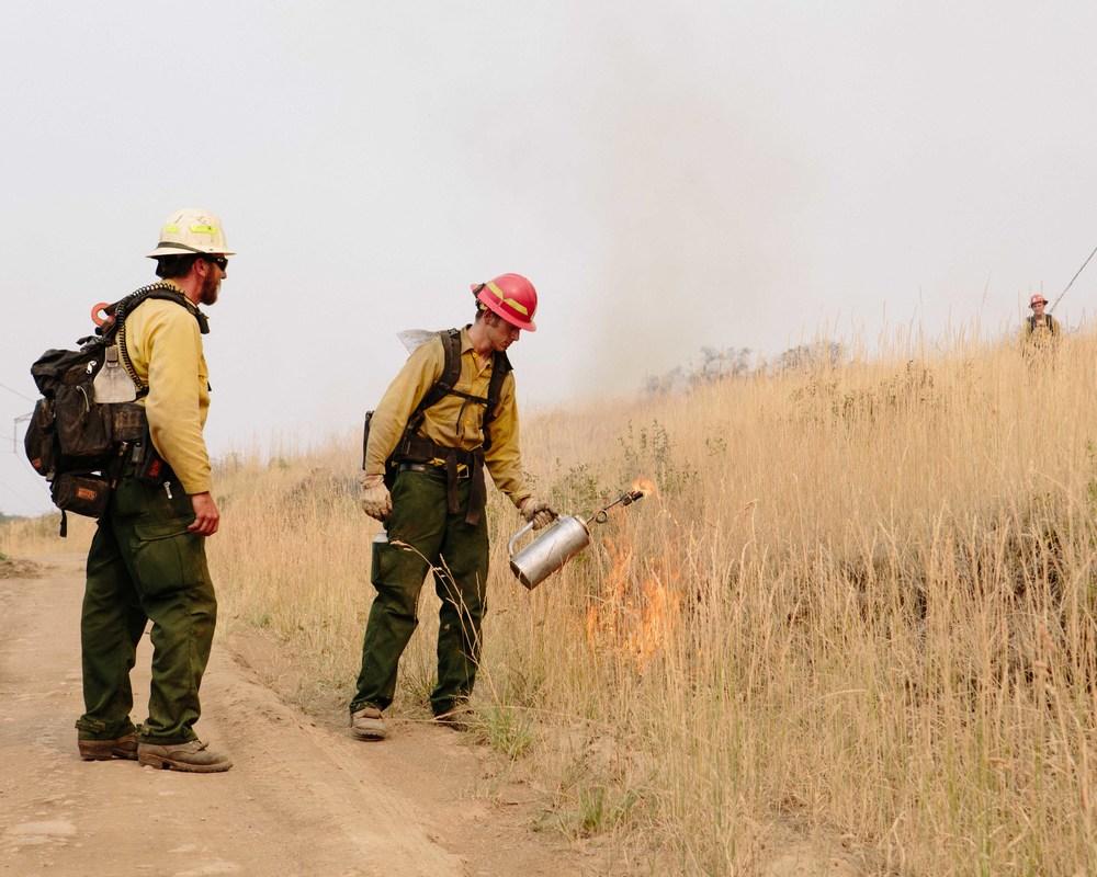 wildfire_321.jpg