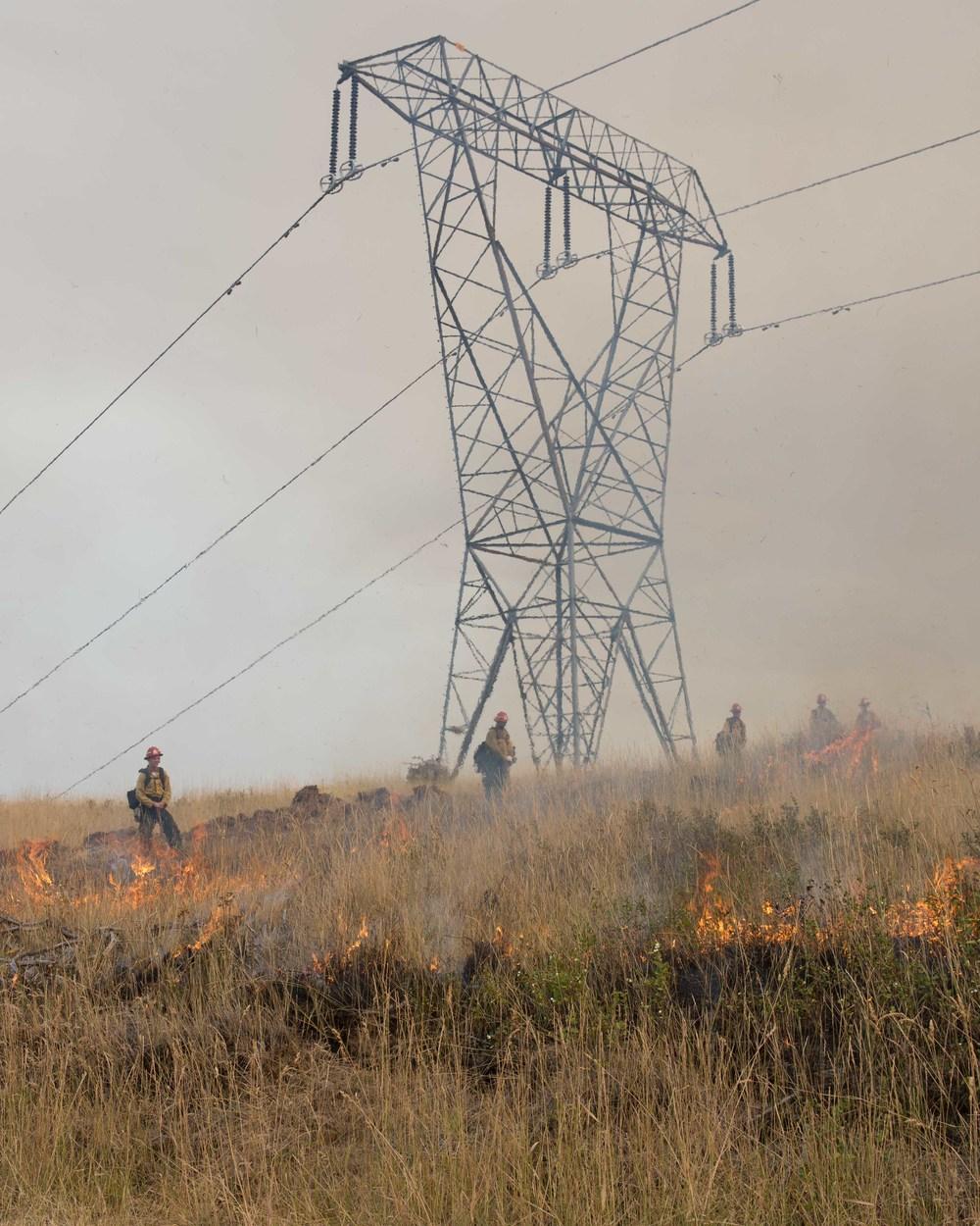 wildfire_325.jpg