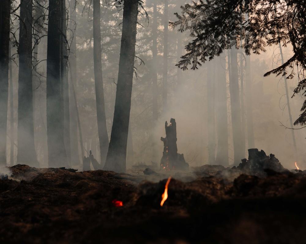 wildfire_276.jpg