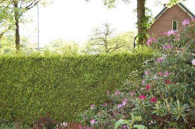 Renkum Garden