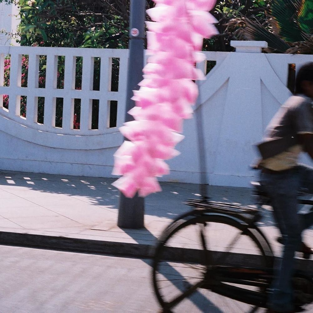 cotton candy pink // last spring in Pondy