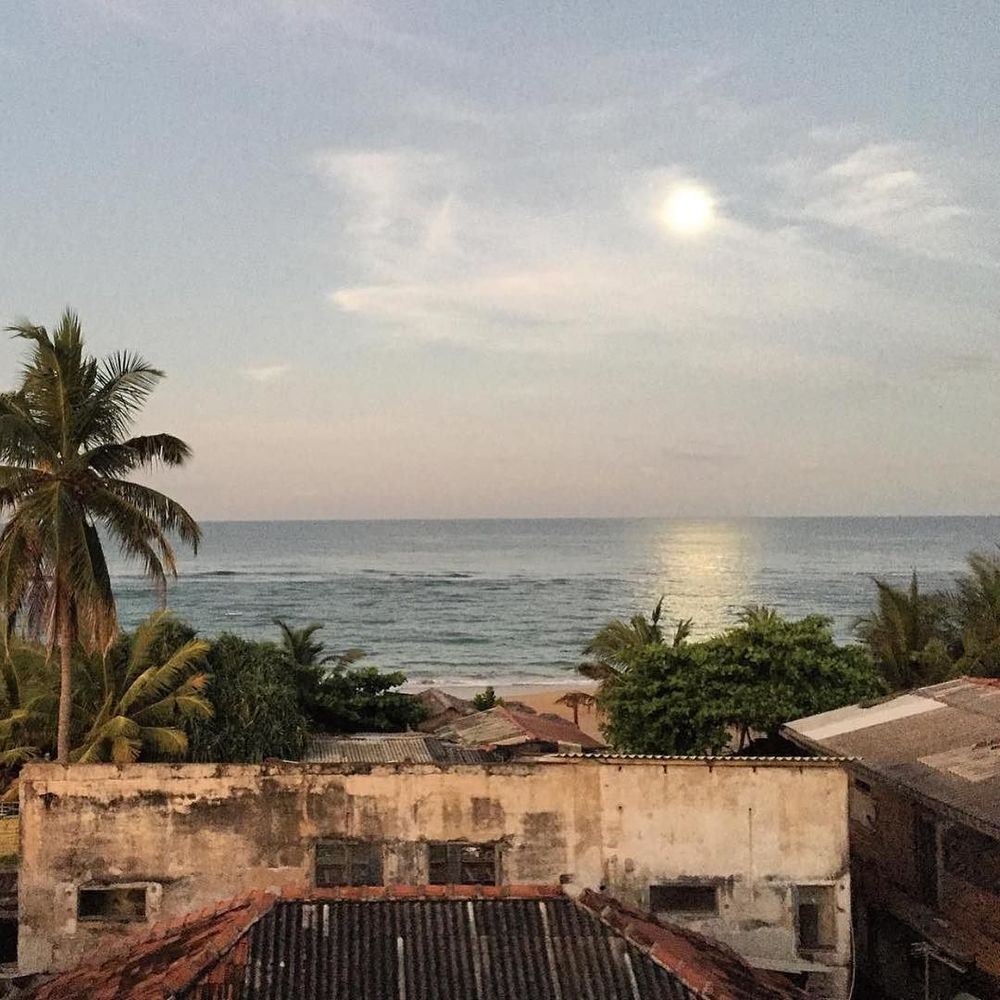 Dehiwala beachfront 🌴