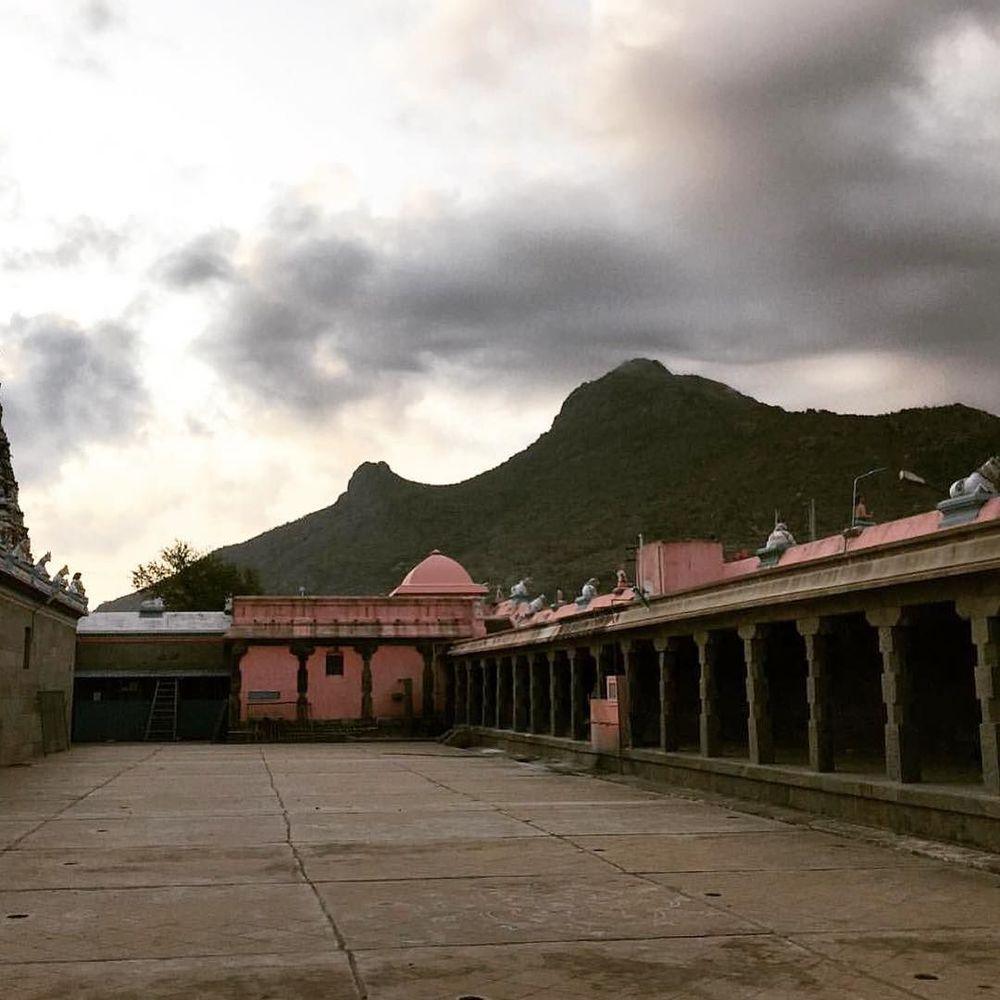 Arunachala /// @tigraxtigra is the new new cistanthe