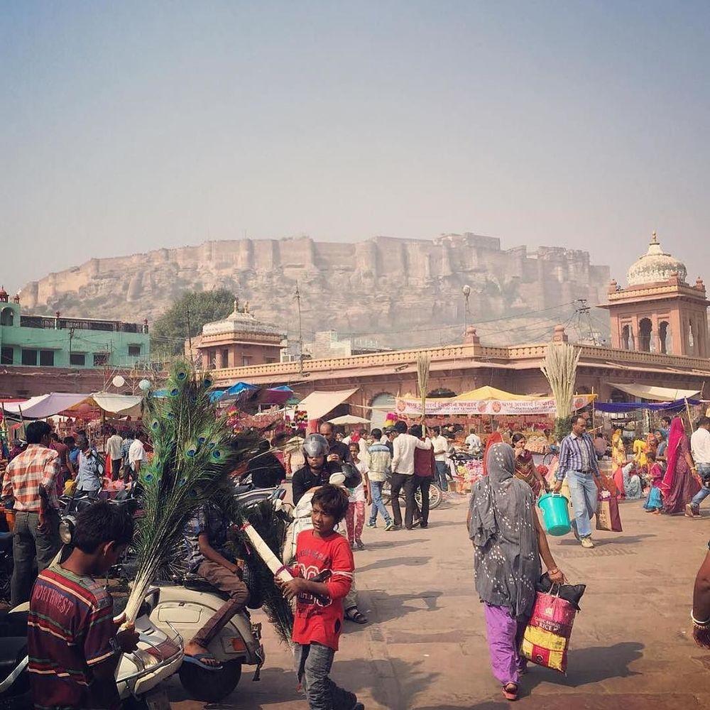 TIGRA TIGRA is the new new cistanthe // market in Jodhpur