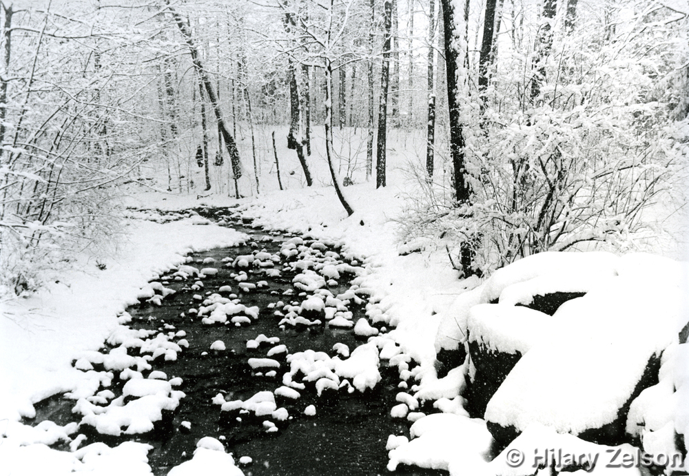 Black And White Film Photography Snow