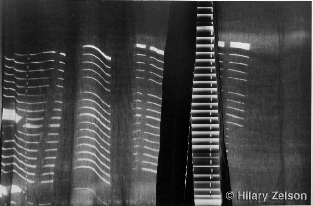 Abstract Black And White Film Photography