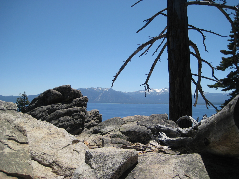 Tahoe May 2009 (50).JPG