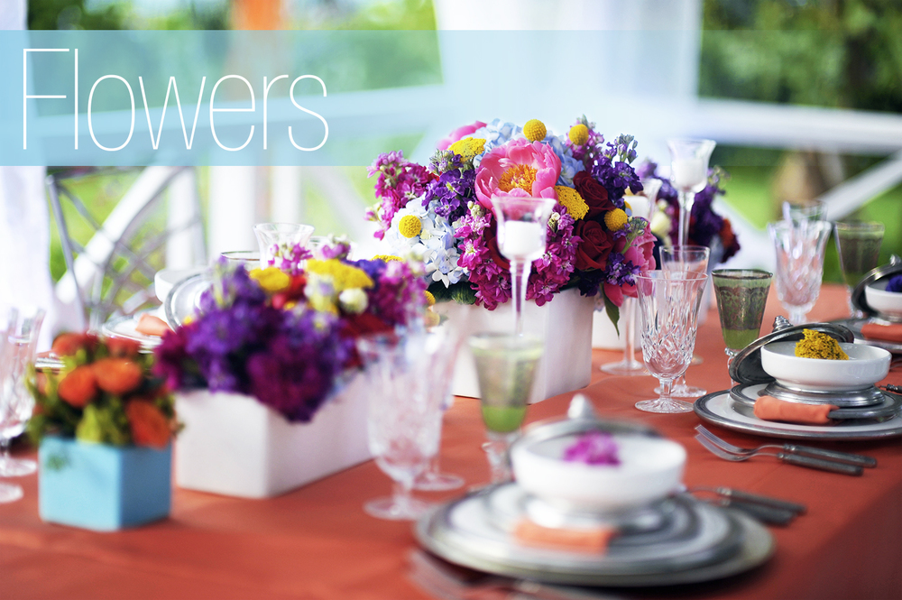 Click to view images of beautiful flowers.