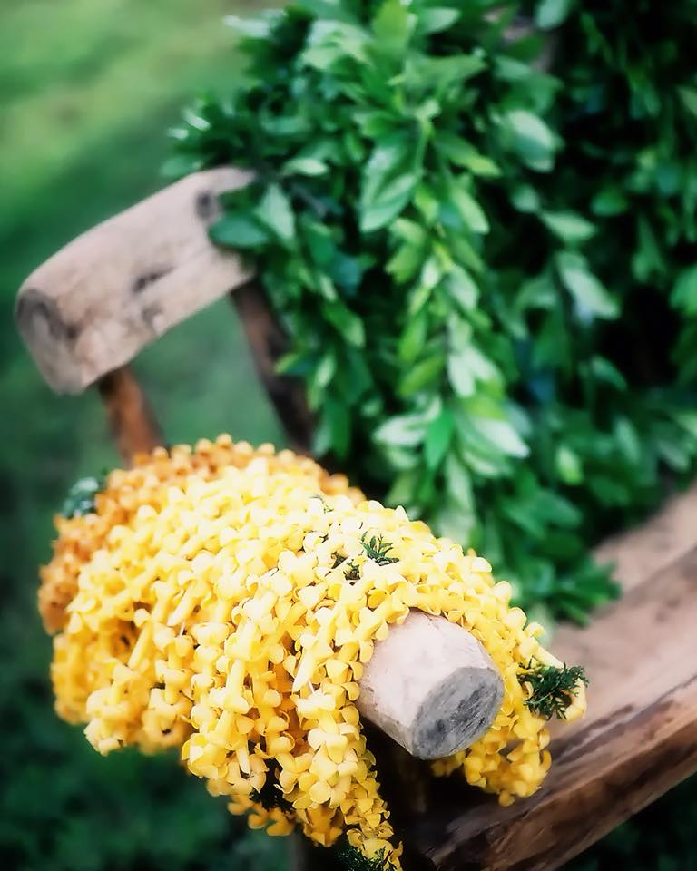 MUSE Bride - Wedding Photography