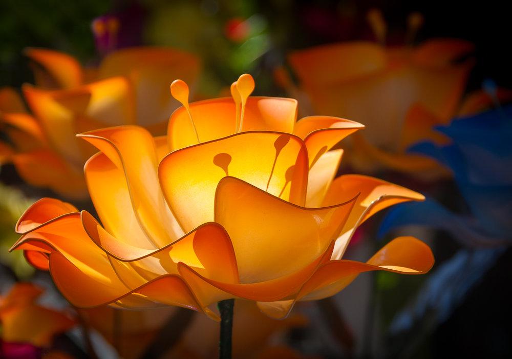 Orange Plastic.jpg