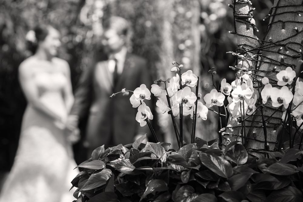 Heintzelman Wedding-20bw.jpg