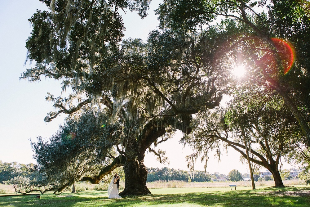 Lindsey_A_Miller_photography_charleston_mcleod_plantation_wedding_row_of_oaks_southern_classic_fall_spanish_moss_historic_home_039.jpg