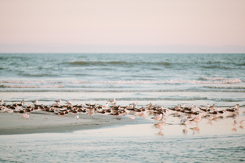 charleston_family_beach_photographer_lindseyamillerphotography_09.jpg