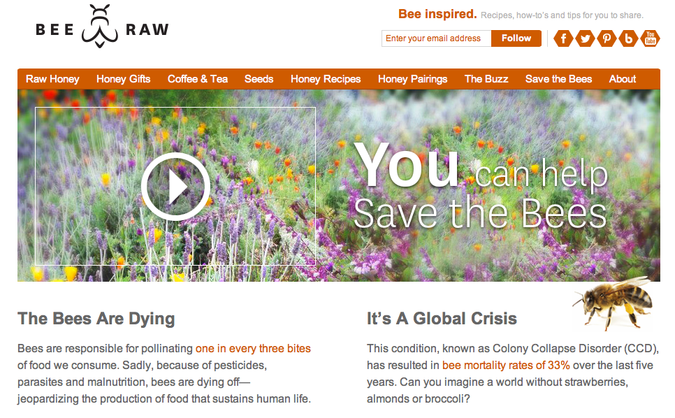 Save the bees landing page photography