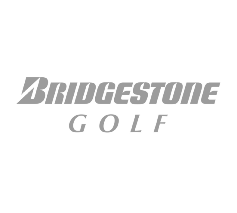 Bridgestone golf   |   golf RETAIL brand research & evaluation, website audit & Content Plan, annual marketing plan, consulting
