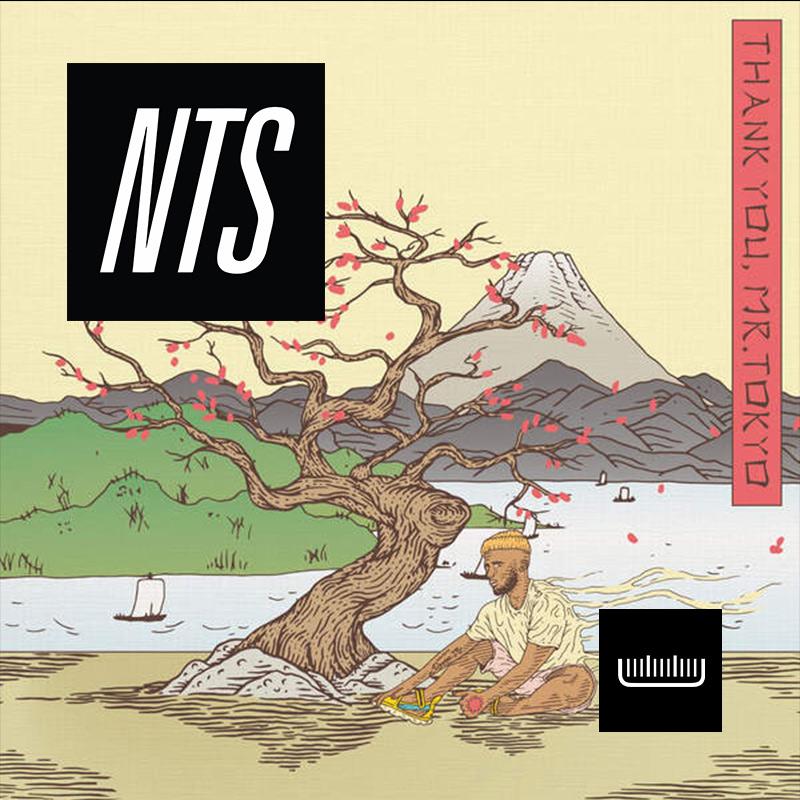 NTS_003.jpg