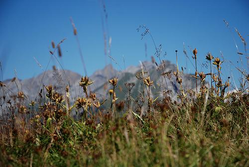 Haute Savoie Ça fait du bien de respirer, loin de tout. French Alps.