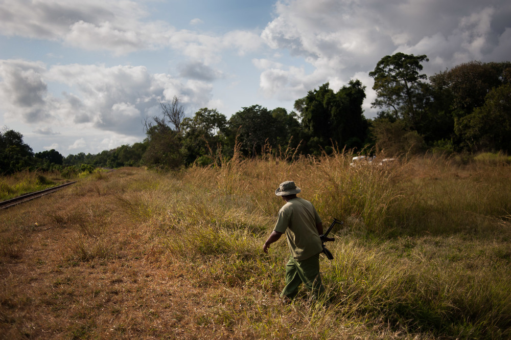 Simba Michael, a Wildlife Ranger of 7 years, walks through the Selous Game Reserve near to a railway line that connects the economic hub of Dar es-Salaam with neighbouring Zambia.
