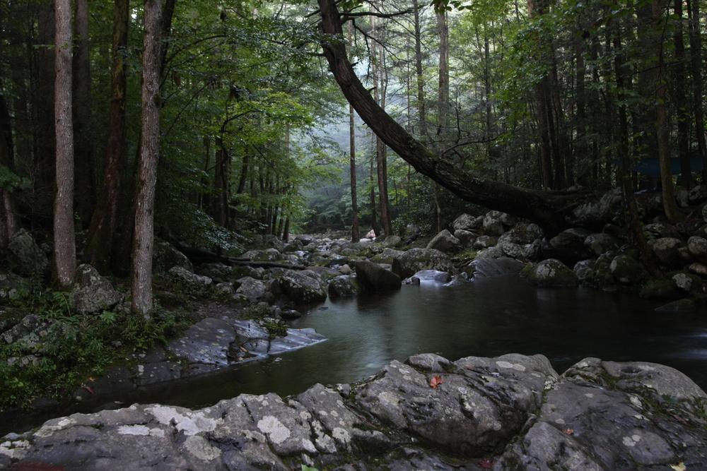 Big Creek Loop Backpacking Trip - GSMNP 8/21 - 8/23/2010