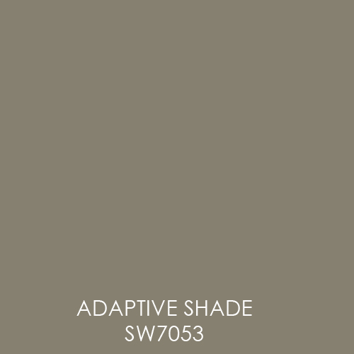 ADAPTIVE_SHADE.jpg