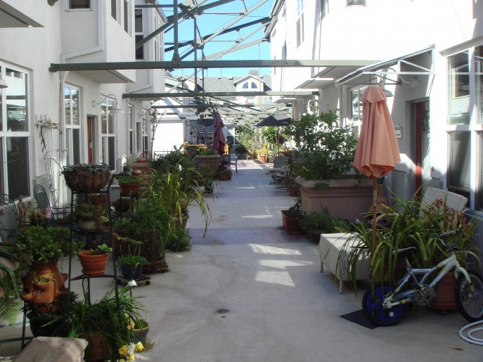 Swans Market Cohousing