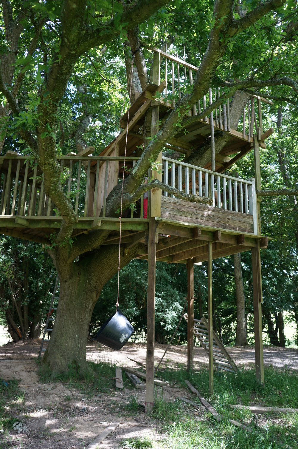 Laughton treehouse.JPG