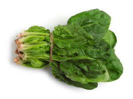 spinach-bunch.jpg