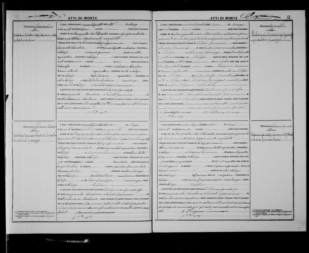 Palmieri Rosaria Death Record 1894.jpg